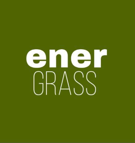 Графический дизайнер для создания логотипа Energrass. фото f_8495f8c7426b0e11.png