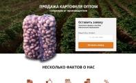 Разработка Landing Page Продажа картофеля