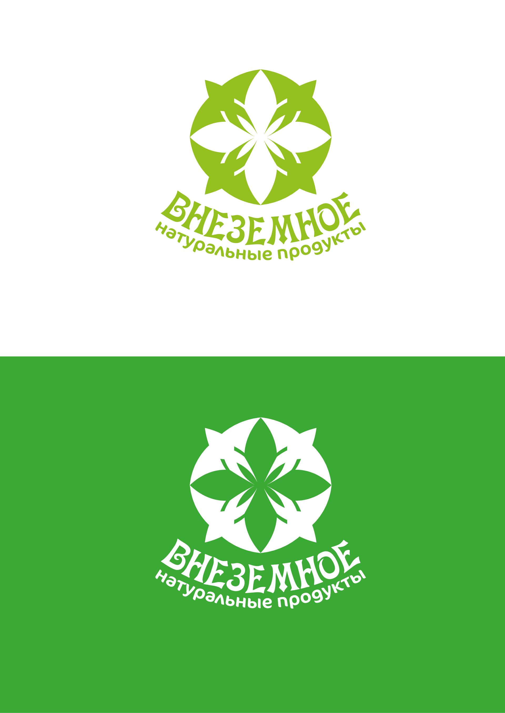 "Логотип и фирменный стиль ""Внеземное"" фото f_3335e793c7953a83.png"