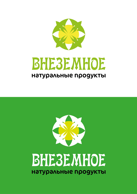 "Логотип и фирменный стиль ""Внеземное"" фото f_4995e793c677666a.png"