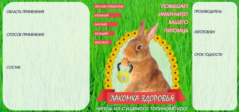 Дизайн этикетки на ПЭТ-банку лакомства для домашних грызунов фото f_25953aa7b4fd218e.jpg