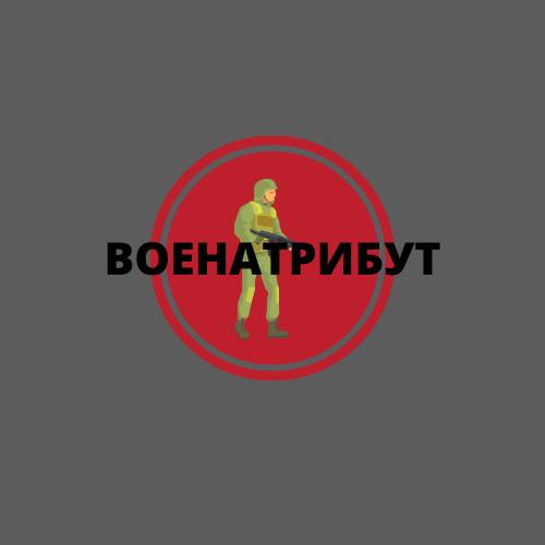 Разработка логотипа для компании военной тематики фото f_065601b9dbeebc5f.png