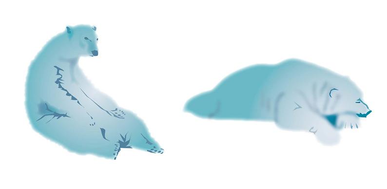 Графика. Медведи