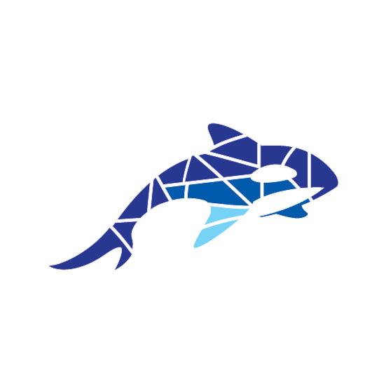 Разработка фирменного символа компании - касатки, НЕ ЛОГОТИП фото f_0875afe87c27570f.jpg