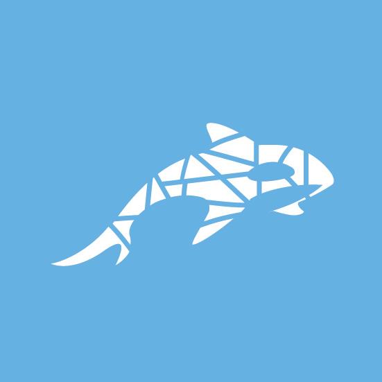 Разработка фирменного символа компании - касатки, НЕ ЛОГОТИП фото f_5535afe87cd11b93.jpg