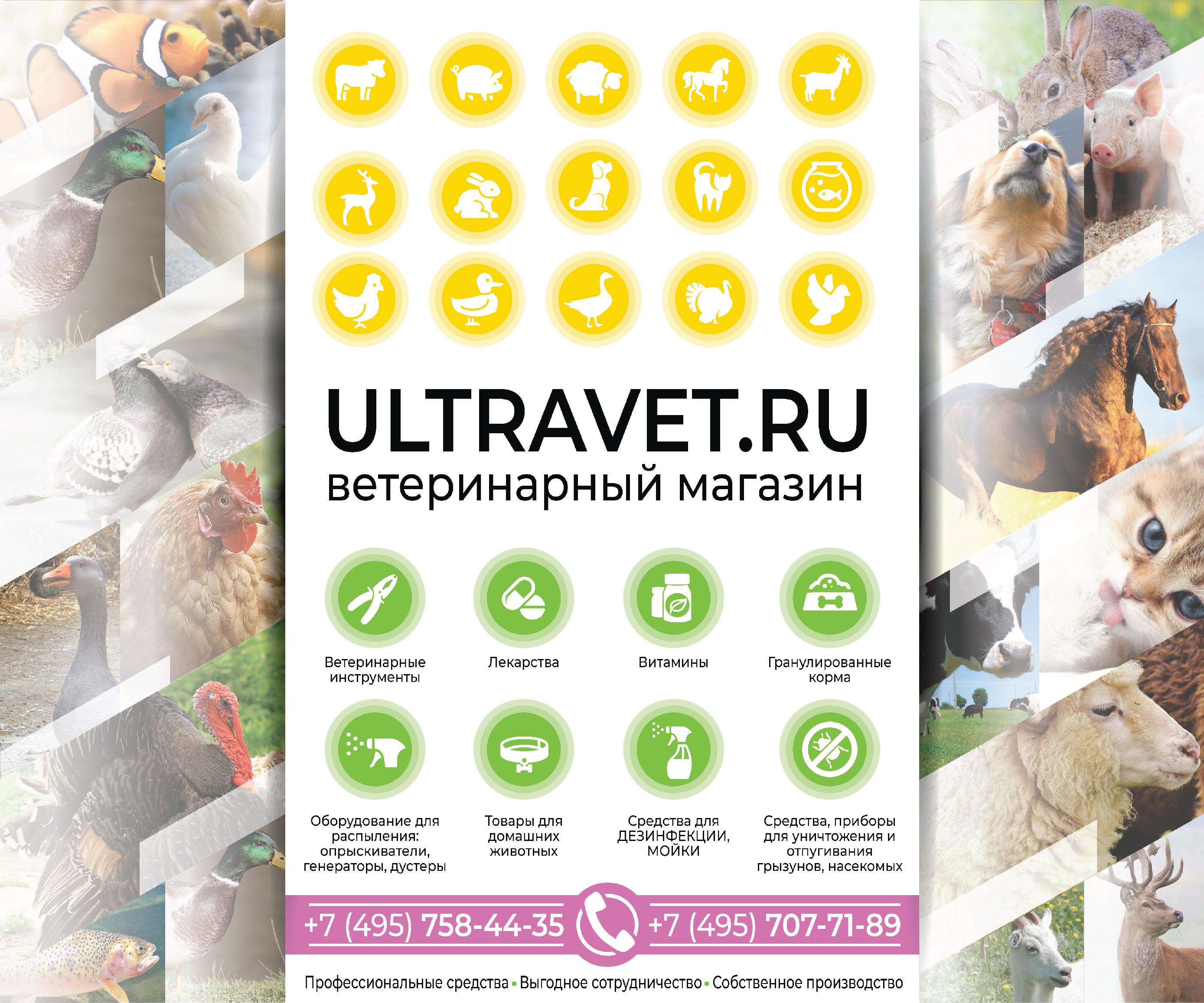 Нужен дизайн постера,  ширина 3 метра, высота 2,5 метра. фото f_8825c0e2a818521e.jpg