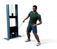 Для iPhone 340 физических упражнений