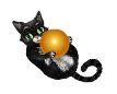 Кот с мячом для аналога игры Sims