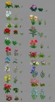 Цветы для игры Цветмонет
