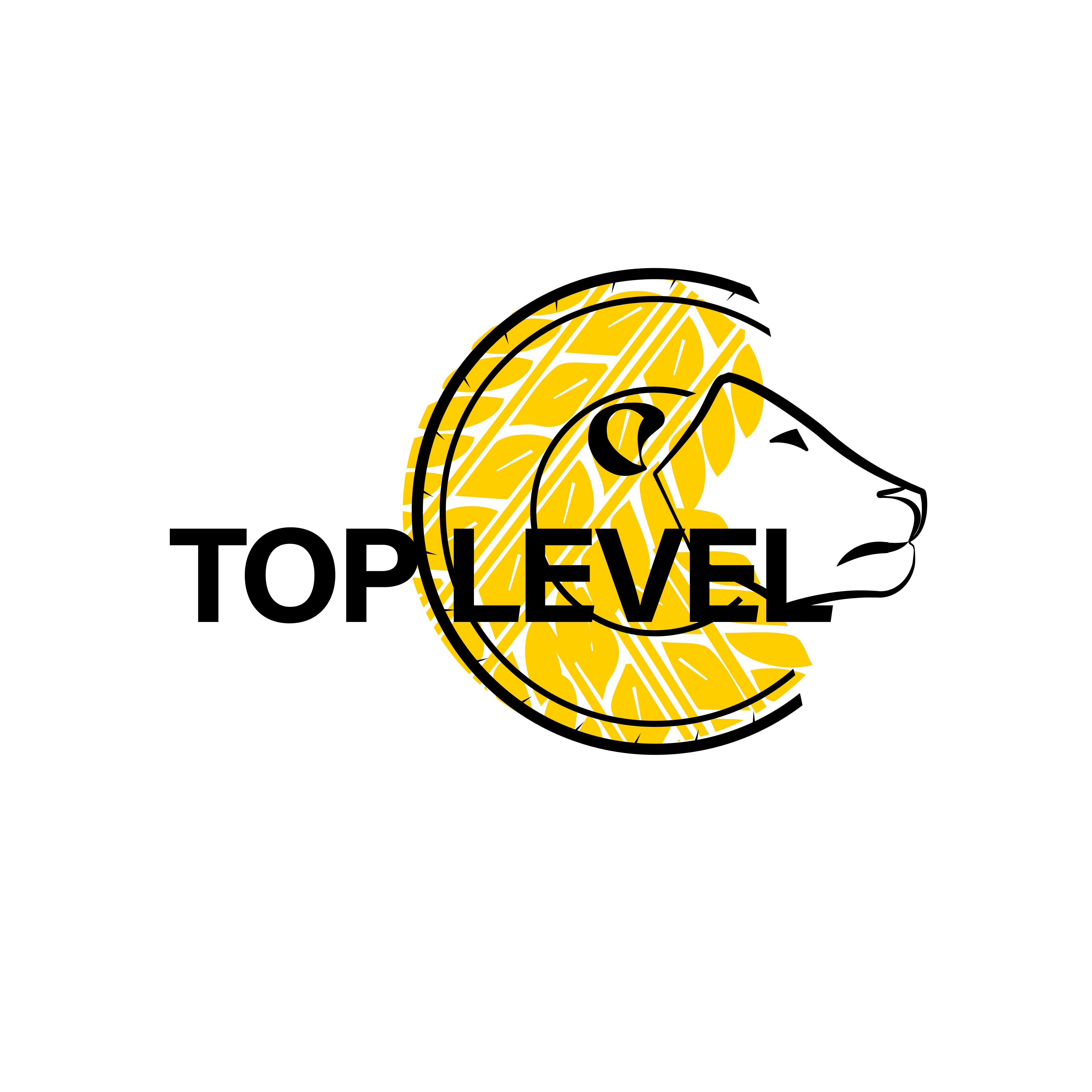 Разработка логотипа для тюнинг ателье фото f_6725f3764aaf1339.jpg
