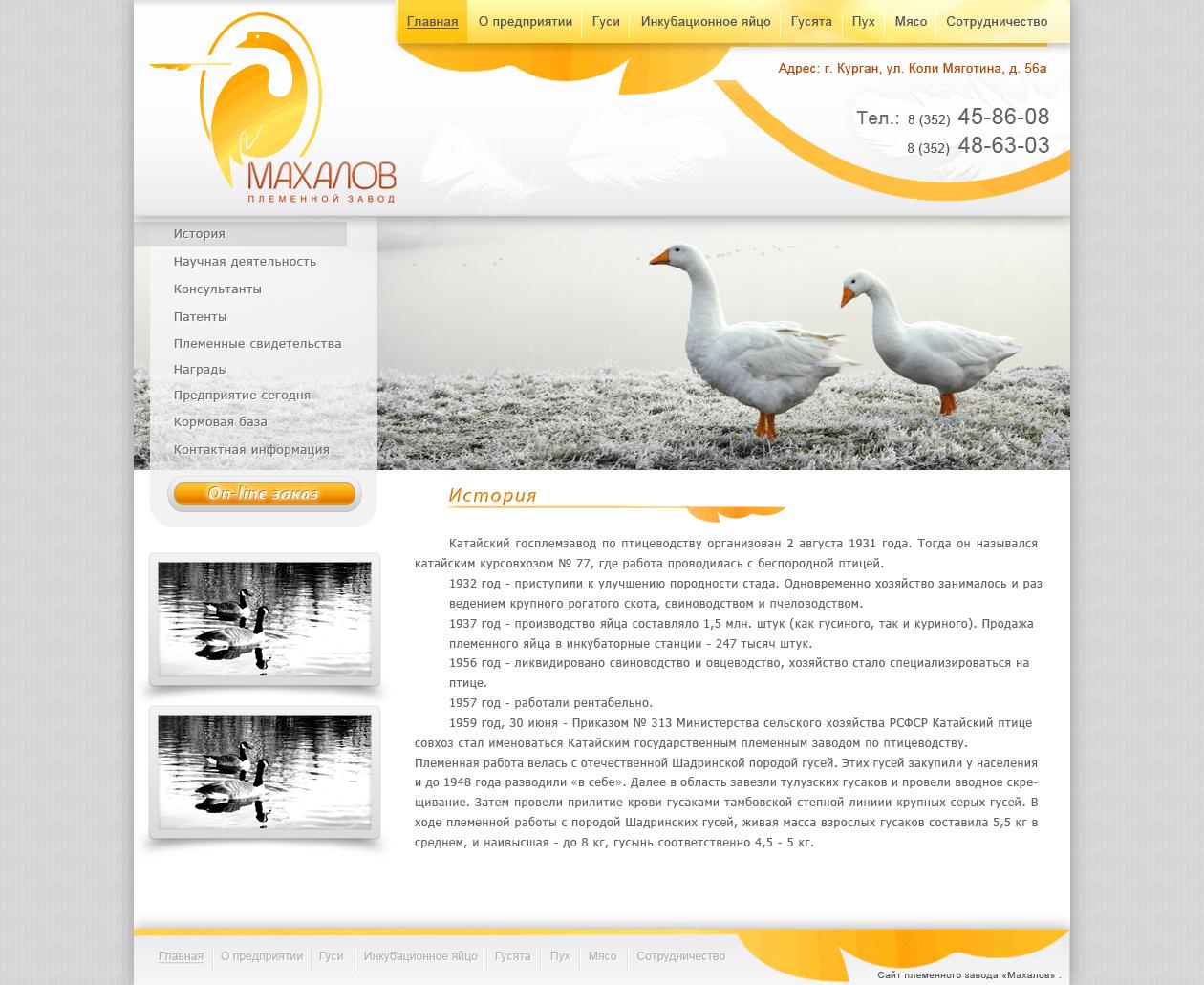 Редизайн сайта. фото f_4e8925e8a372e.jpg