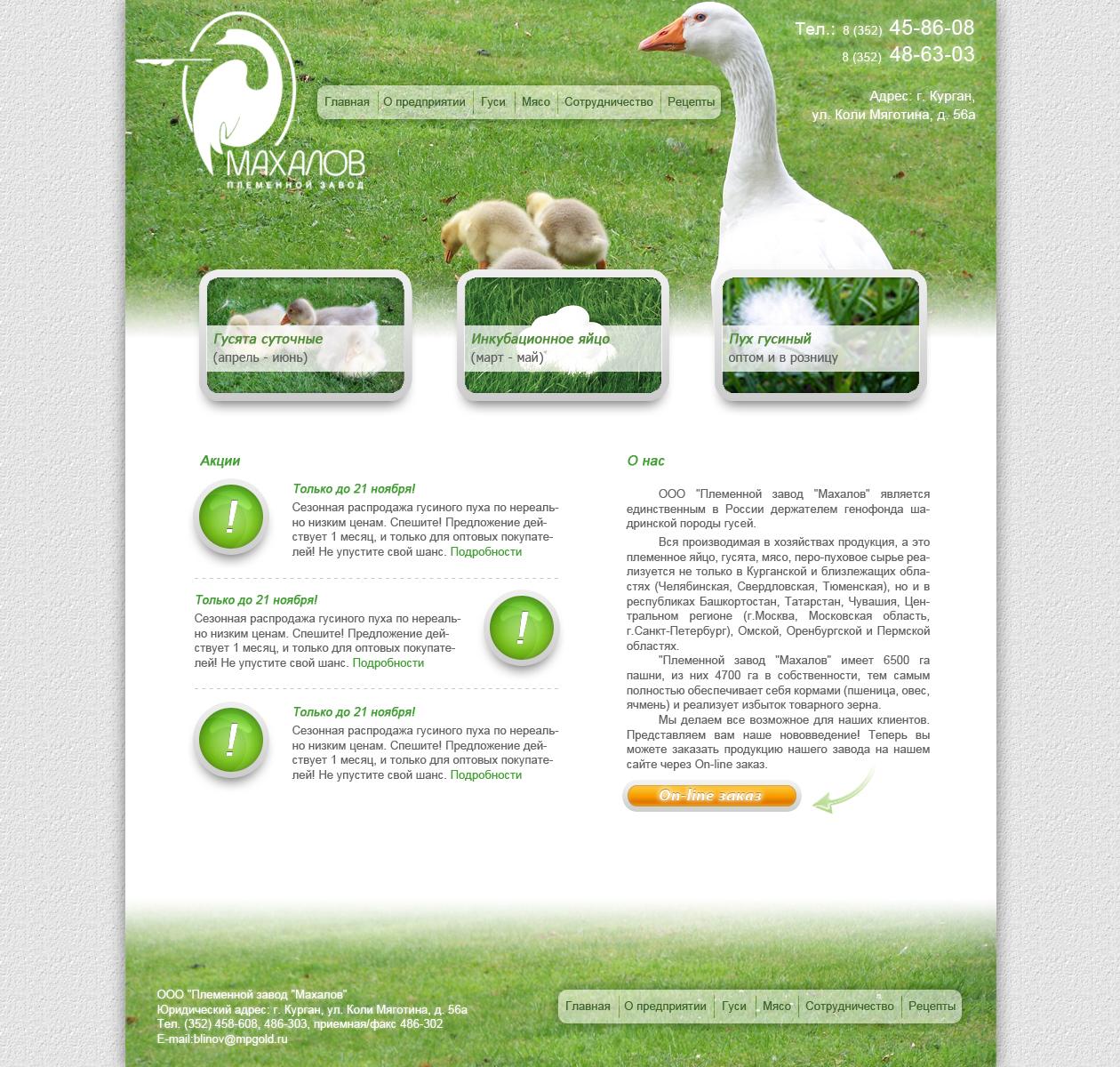 Редизайн сайта. фото f_4e892631b8c45.jpg