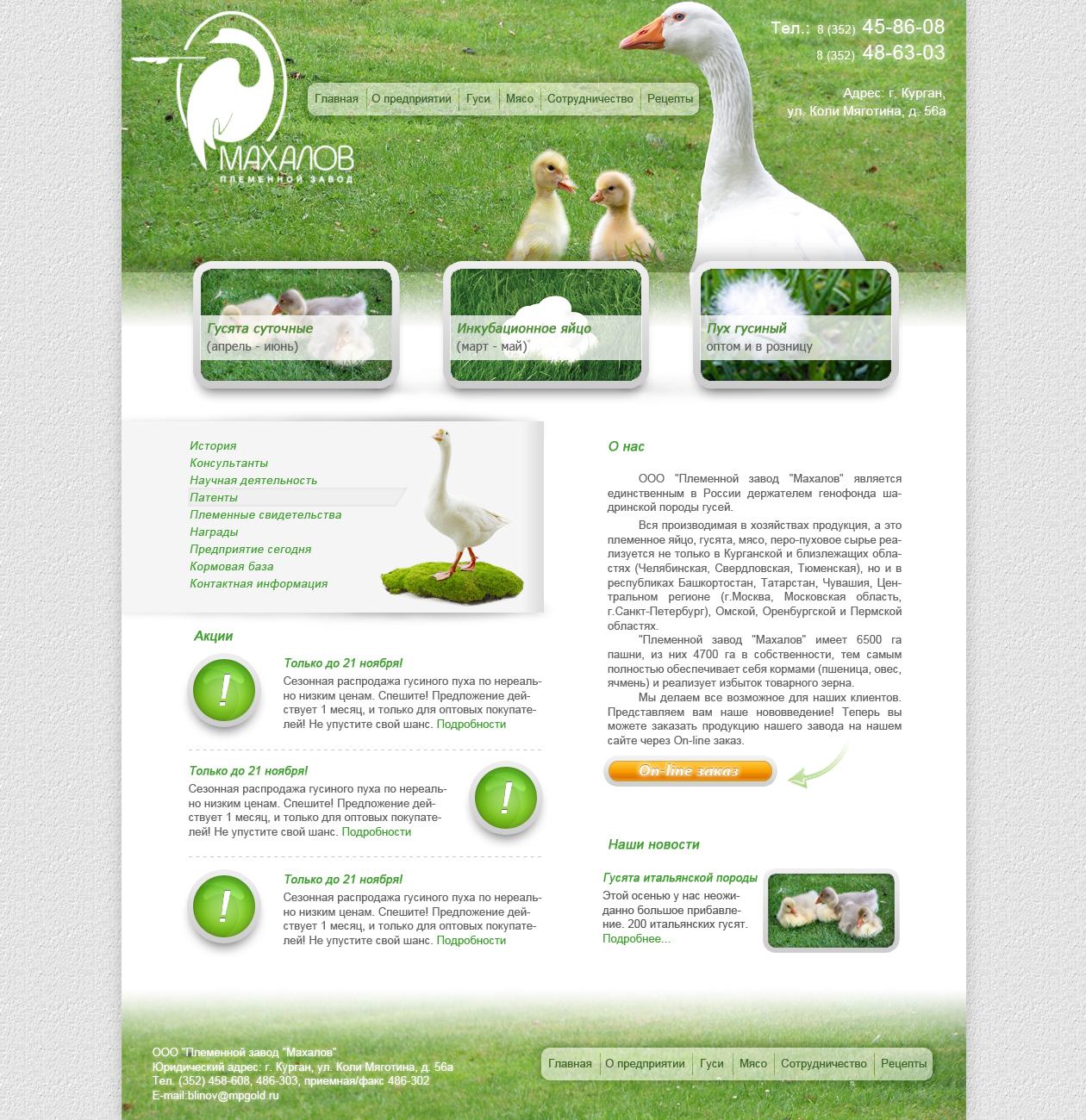 Редизайн сайта. фото f_4e8ae769d3b9e.jpg