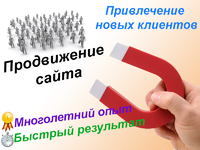 Продвижение сайта методом профессионального прогона по живым каталогам!...