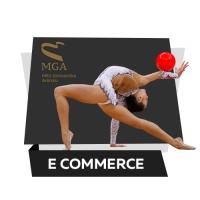 Верстка сайта «Национальная Гимнастическая Арена»