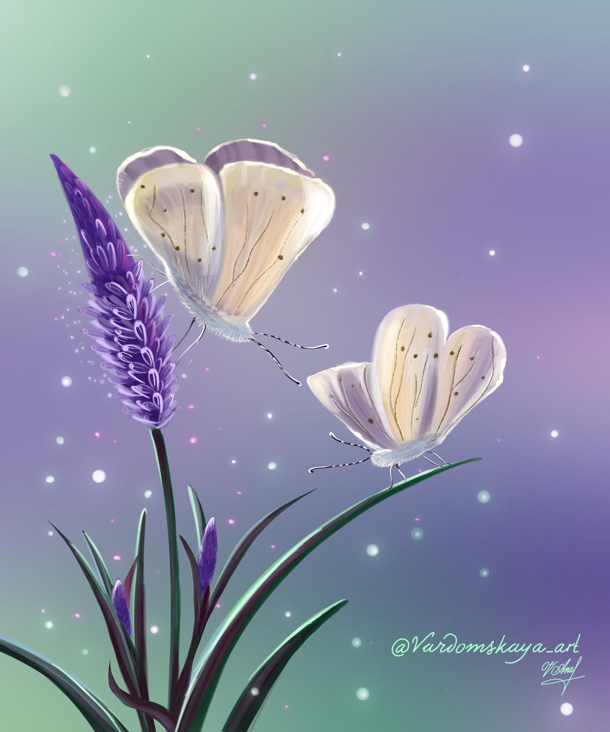 Фиолетовые цветы и бабочки 🦋