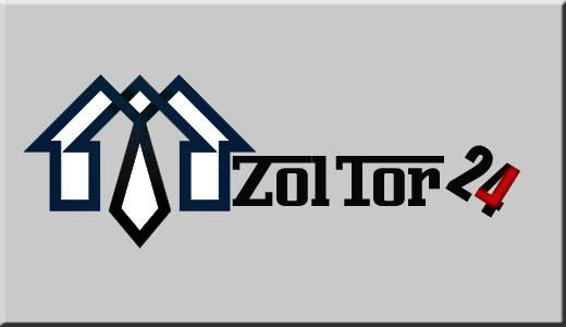Логотип и фирменный стиль ZolTor24 фото f_3445c89e142be247.png