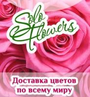 Solo-Flowers