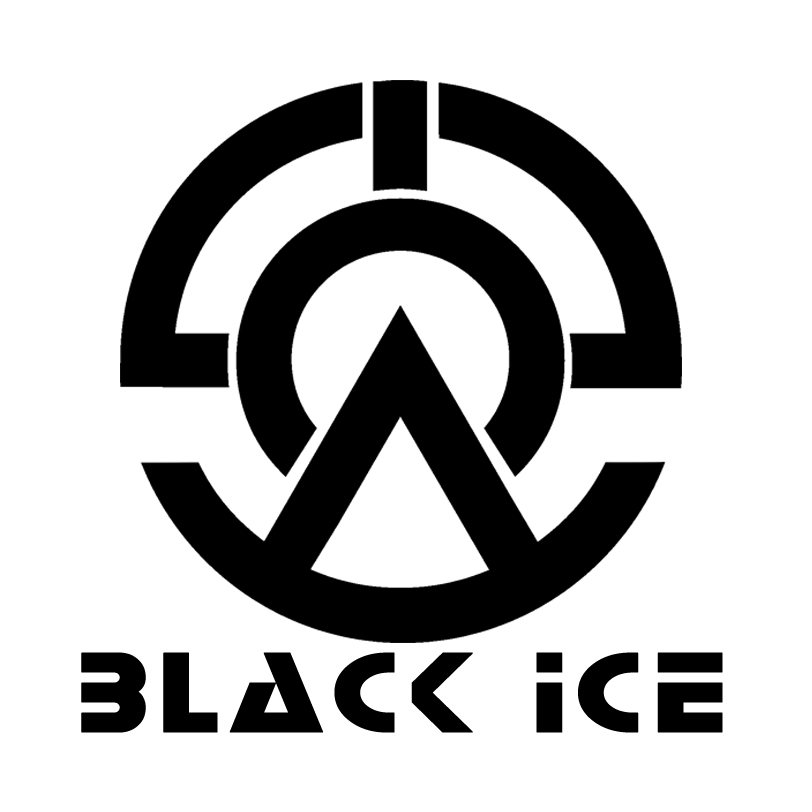 "Логотип + Фирменный стиль для компании ""BLACK ICE"" фото f_37056e34ee2eb8c7.jpg"