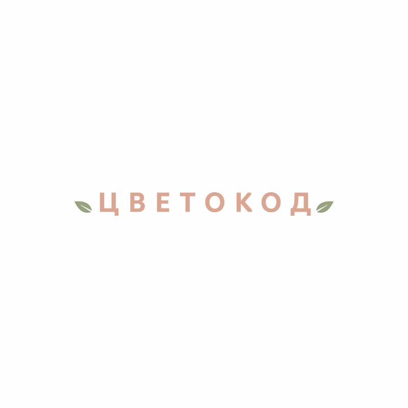 Логотип для ЦВЕТОКОД  фото f_7635d0373b54fafc.jpg