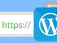 Перевод wordpress сайта на ssl (https). Подключение платного/бесплатного...