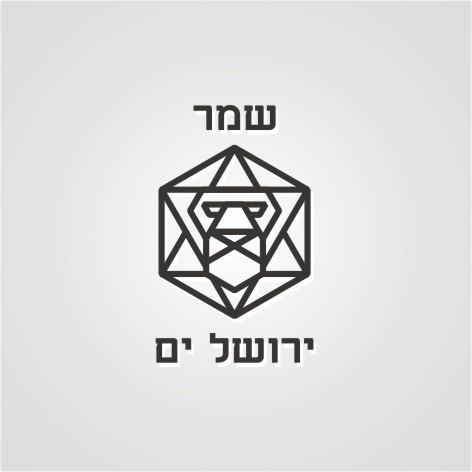 Разработка логотипа. Компания Страж Иерусалима фото f_882520b51640d53d.jpg