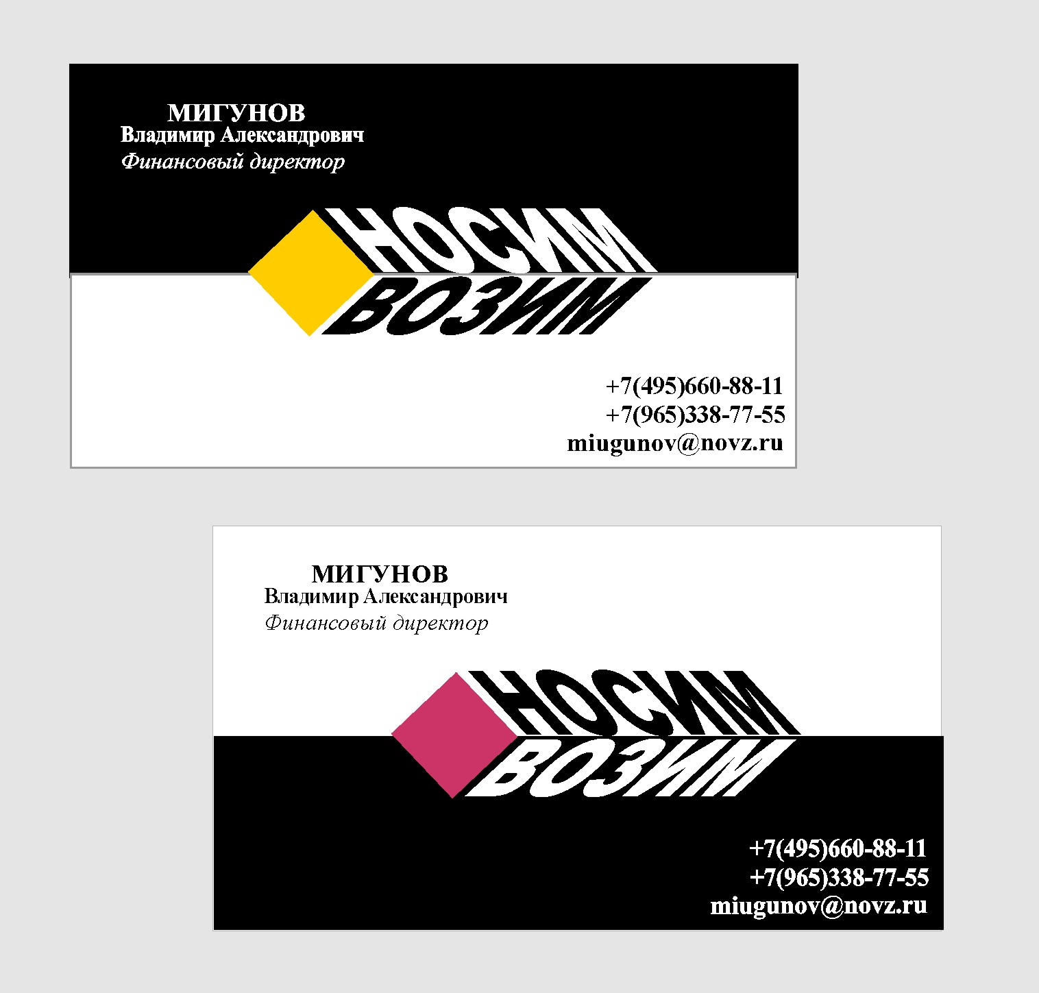 Логотип компании по перевозкам НосимВозим фото f_9105cf67f8f14bba.jpg