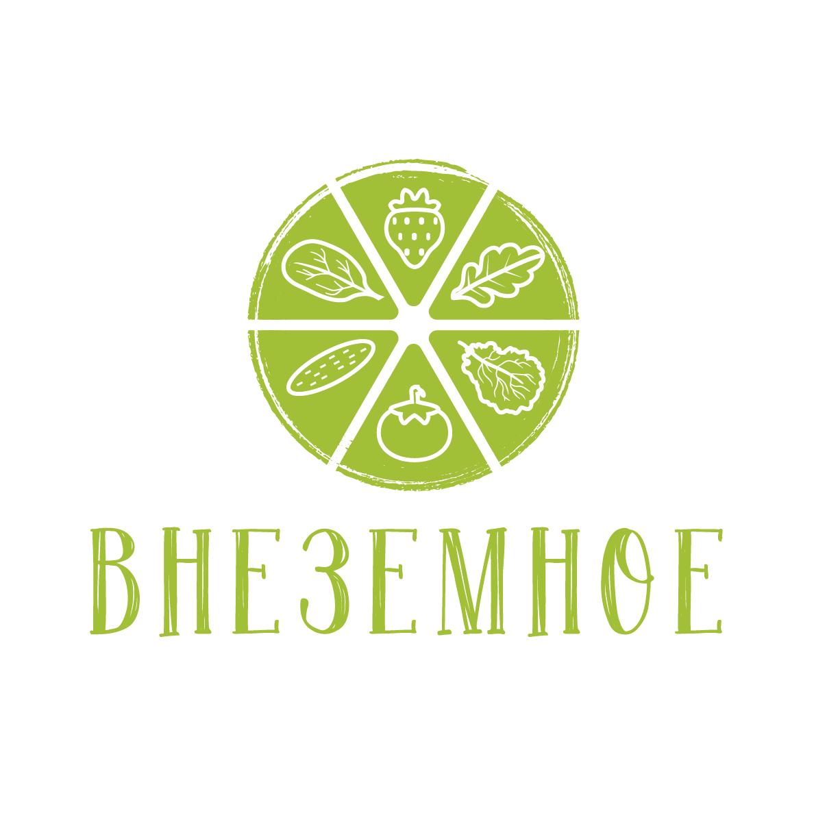 "Логотип и фирменный стиль ""Внеземное"" фото f_5805e74a215e0938.png"
