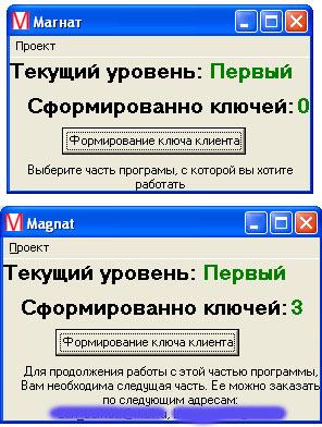 """Программа """"Магнат"""""""