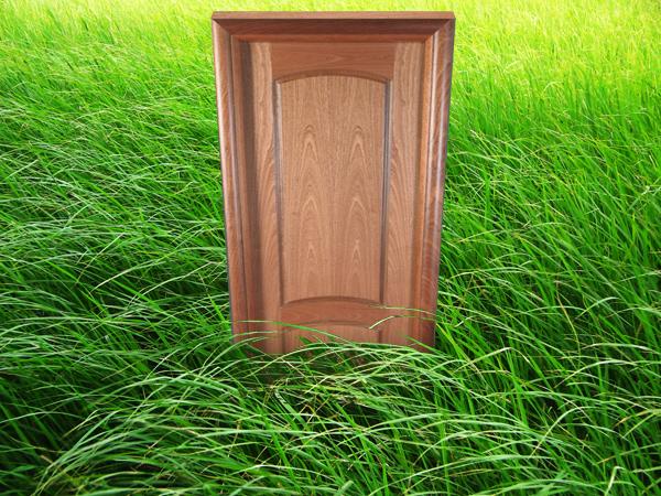 дверь в траве