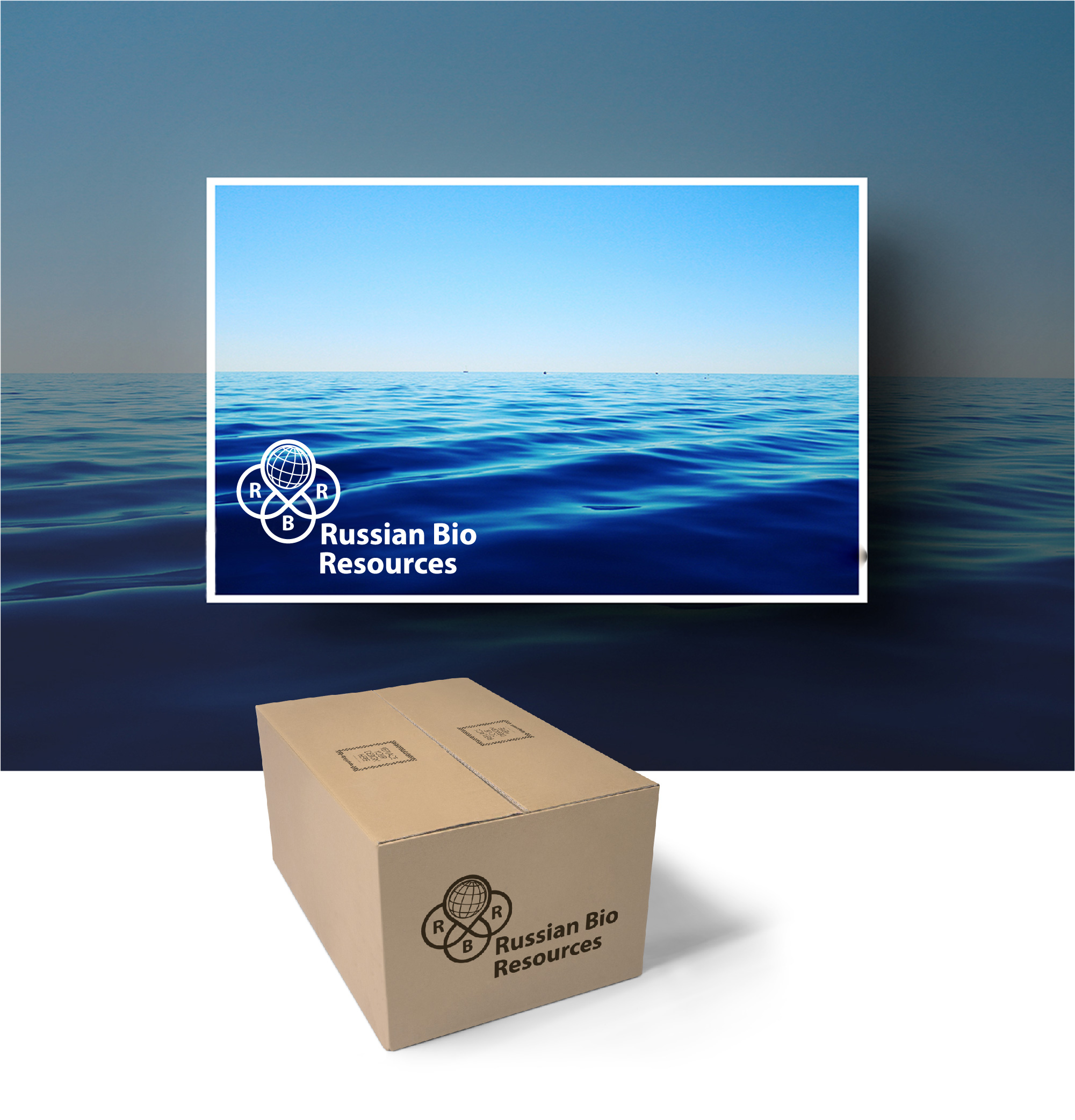 Разработка логотипа для компании «Русские Био Ресурсы» фото f_39058fb7e1a02449.jpg