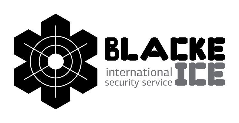 "Логотип + Фирменный стиль для компании ""BLACK ICE"" фото f_435571a04fb24c1a.jpg"