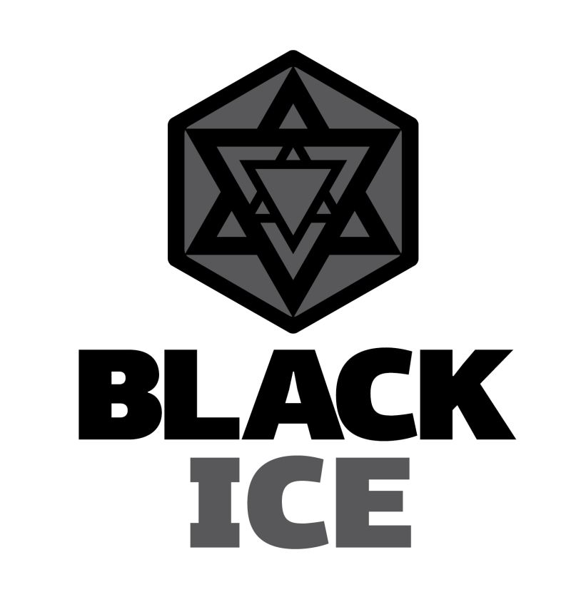 """Логотип + Фирменный стиль для компании """"BLACK ICE"""" фото f_67956e183166b754.jpg"""