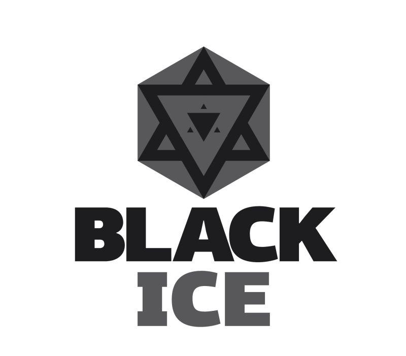 "Логотип + Фирменный стиль для компании ""BLACK ICE"" фото f_84656e92ea917c9a.jpg"