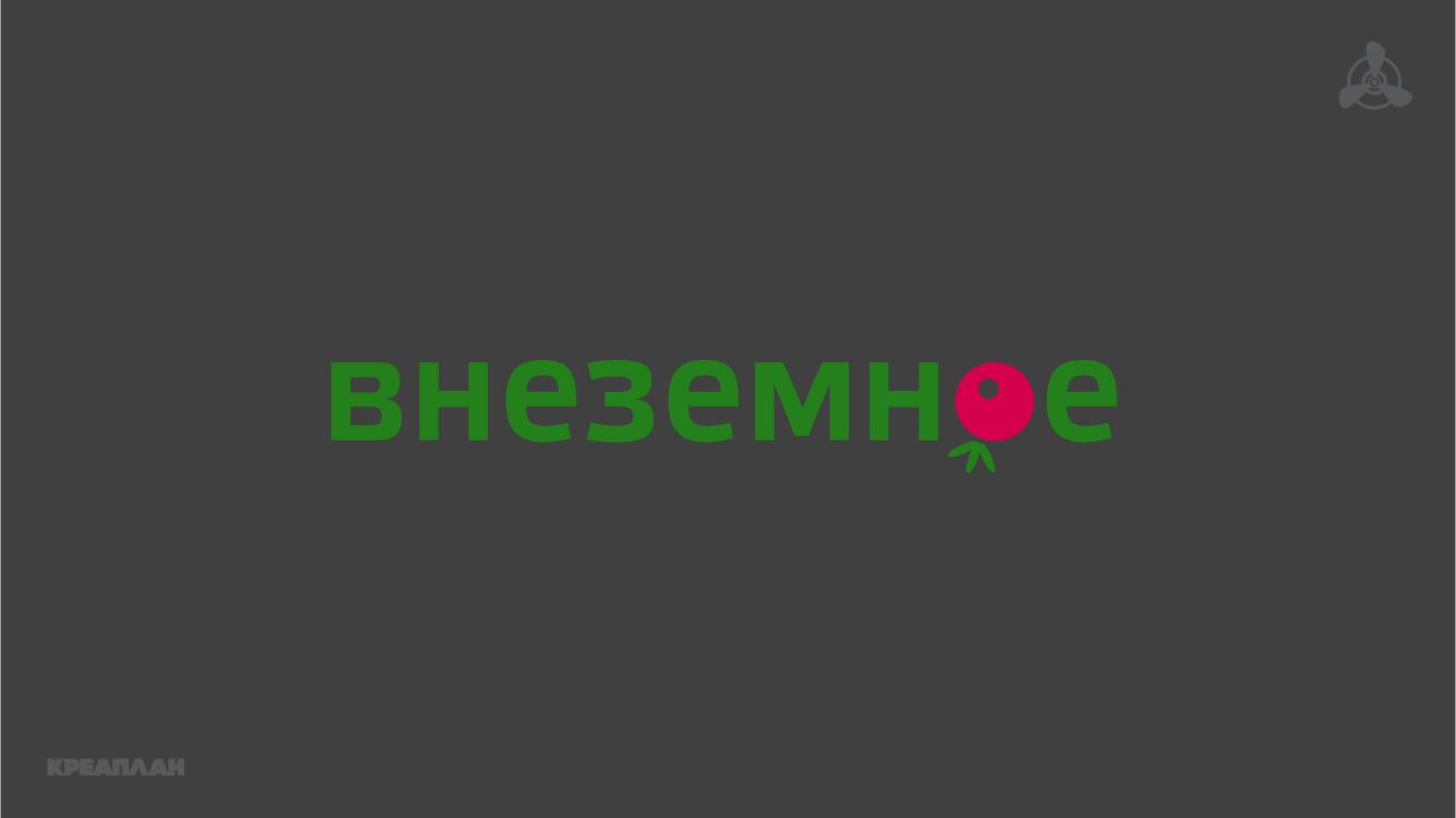 "Логотип и фирменный стиль ""Внеземное"" фото f_6405e75d2b9266ba.jpg"