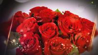 Pixy flowers