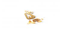 Интро и анимация лого