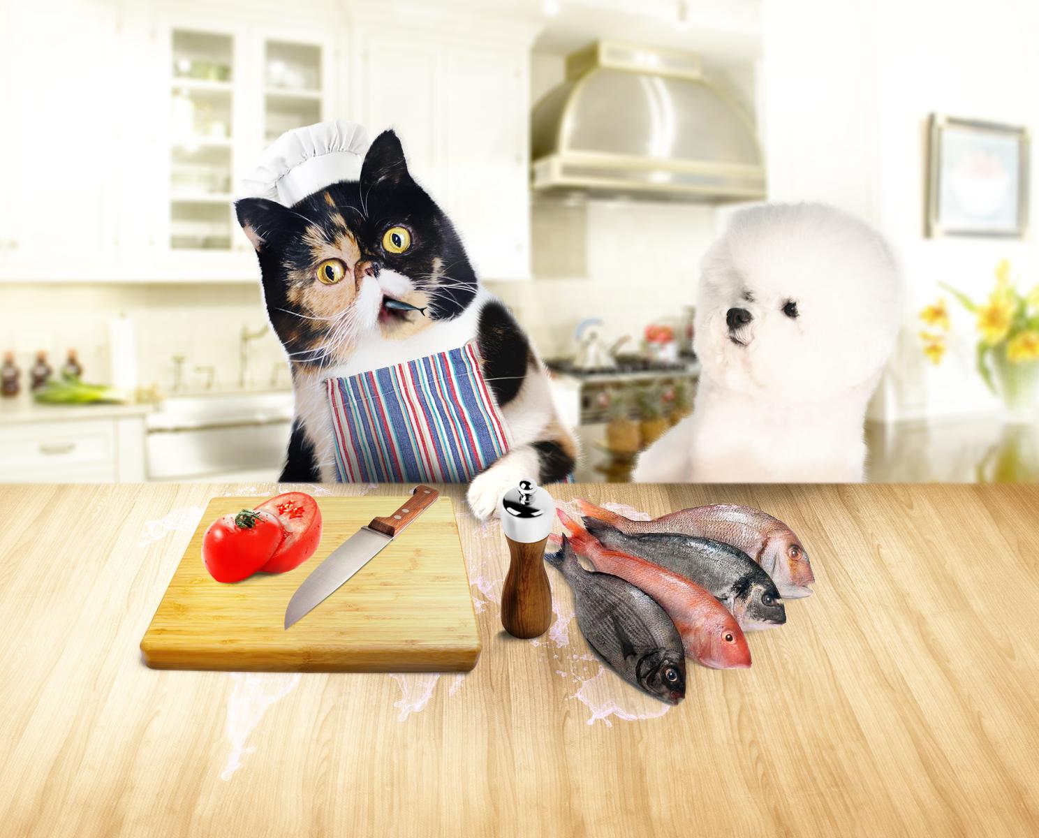 Создать интересный коллаж с участием животных фото f_75951dffbd493f69.png