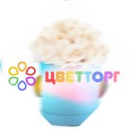 """""""Цветторг"""" – ведущий интернет магазин цветов в Саратове"""
