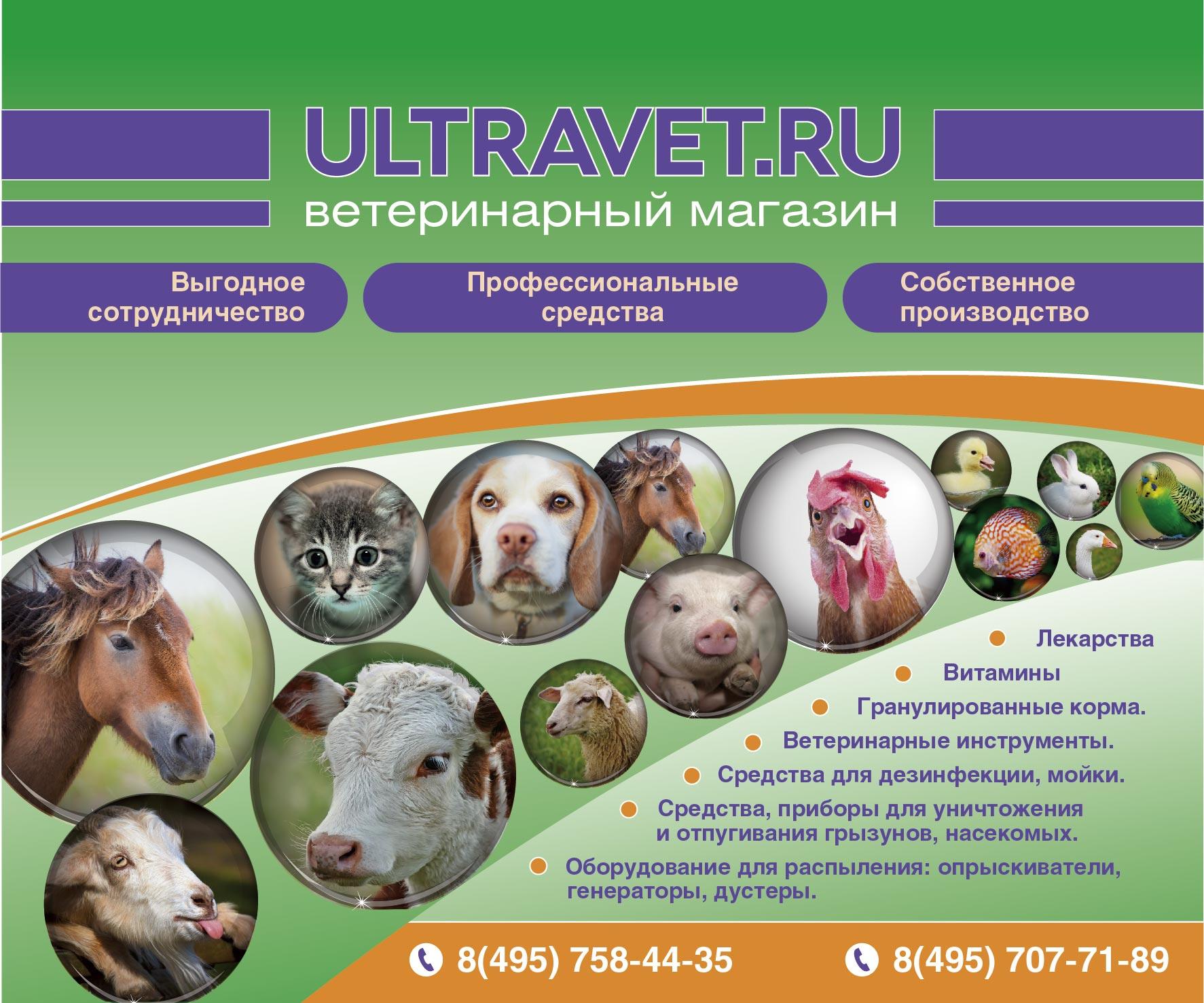 Постер в вктеринарном магазине