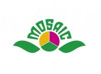 Логотип Mosaic