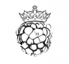 blackberry12