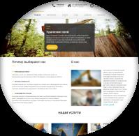 Сайт на Wordpress (натяжка дизайна)