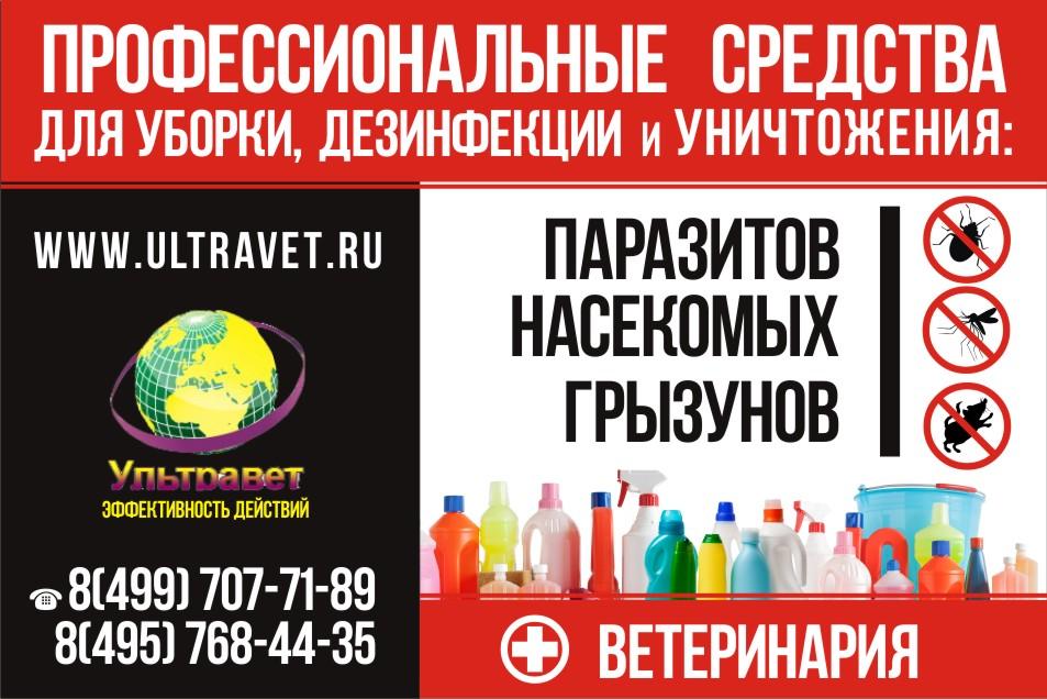 Придумайте дизайн плаката. фото f_02154519705d4b65.jpg