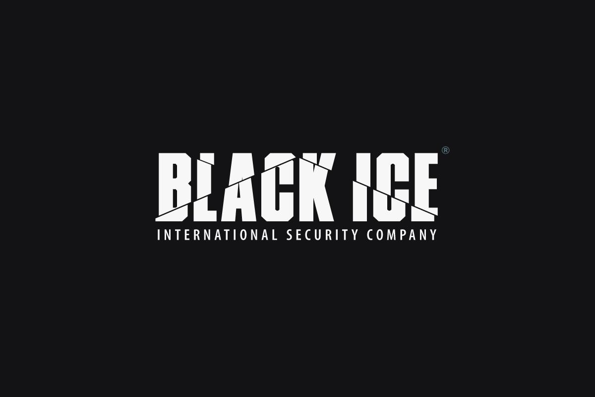 "Логотип + Фирменный стиль для компании ""BLACK ICE"" фото f_29857164274abc48.png"