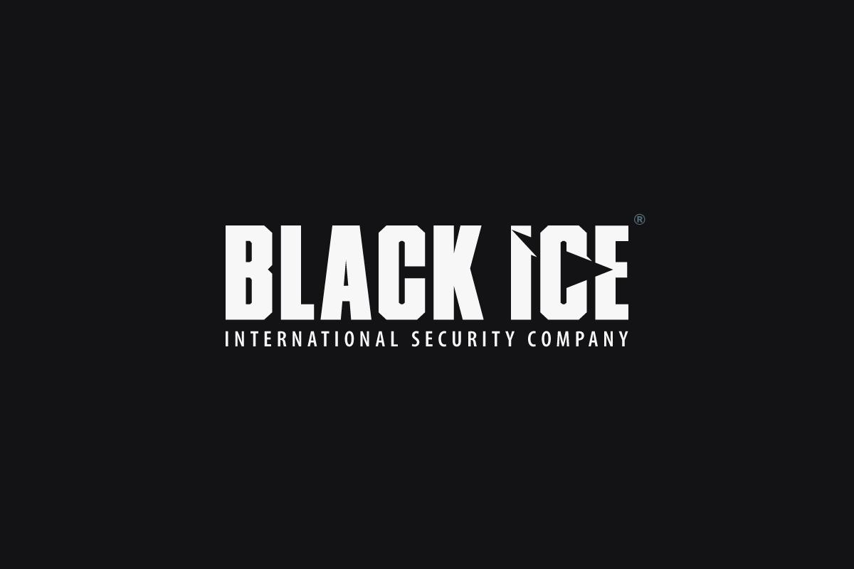 "Логотип + Фирменный стиль для компании ""BLACK ICE"" фото f_72357164250d601c.png"