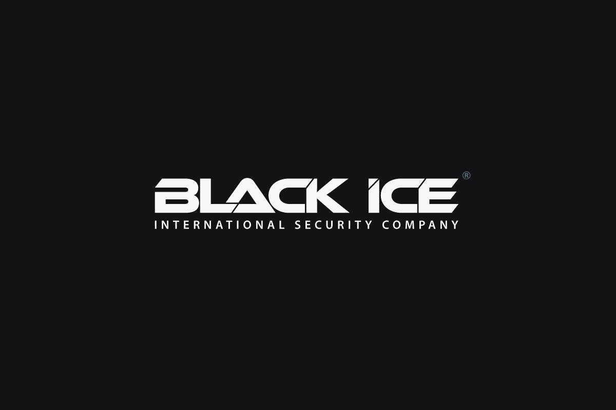 "Логотип + Фирменный стиль для компании ""BLACK ICE"" фото f_999571642a142c74.png"