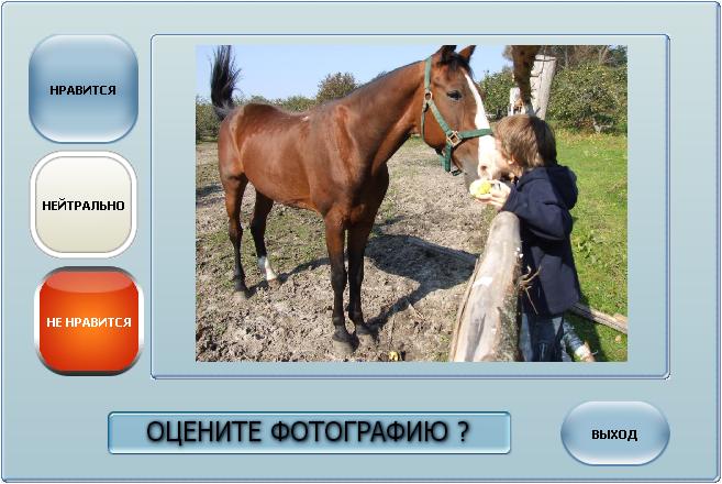 """Оценка Фото """"Светофор"""" концепция приложения"""