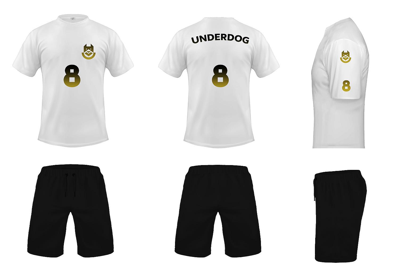 Футбольный клуб UNDERDOG - разработать фирстиль и бренд-бук фото f_0965caf8fc1528b5.jpg