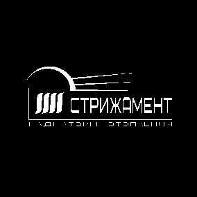Дизайн лого бренда фото f_7955d50f132056e4.png